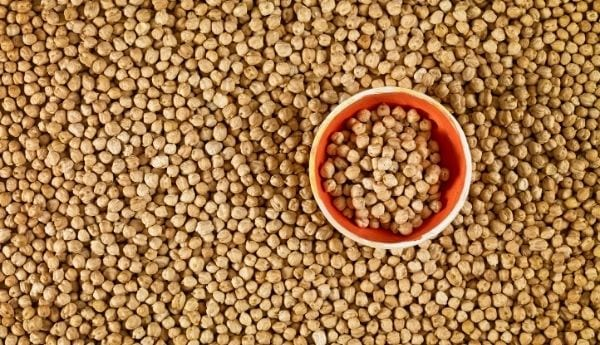 Chickpeas Supplier