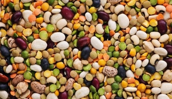 Dry Beans Supplier